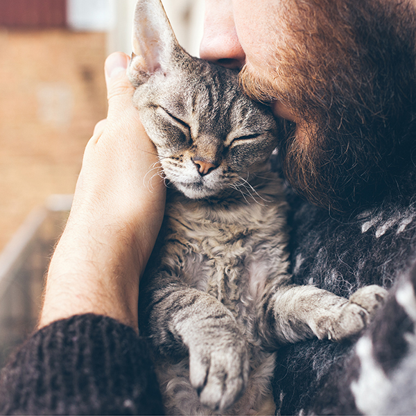 man kissing cat on head
